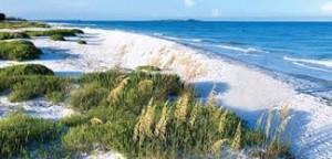 Fort De Soto Park Playas para Visitar en Estados Unidos
