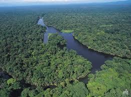 Parque Nacional Tortuguero Mejores lugares para visitar en Costa Rica