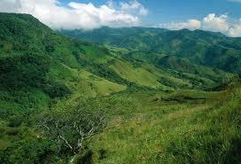 Reserva Biológica Bosque Nuboso Monteverde Mejores lugares para visitar en Costa Rica