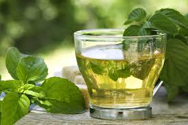 Té Verde alimentos que contienen más antioxidantes