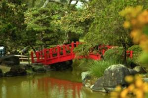 Jardín Botánico - 10 Lugares románticos de República Dominicana