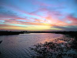 Esteros  de Iberá lugares para visitar en argentina