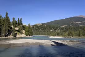 Tree River pescar en Canadá