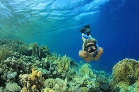 4 cosas divertidas que puedes hacer en Cancún México