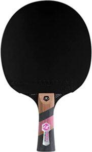 CORNILLEAU Excell 3000 Carbono las 10 mejores raquetas de ping pong
